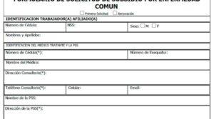 rellenando este formulario puedes acceder al sudsidio